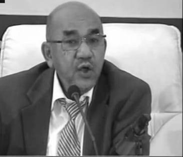 عماد محمد حسن